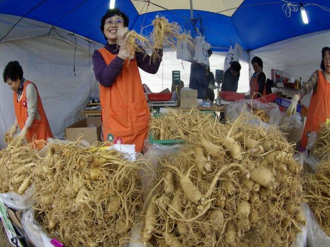 Chợ sâm tươi Geumsan